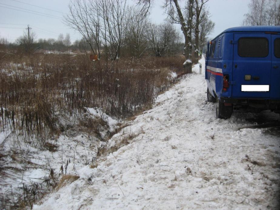 За сутки на дорогах Калининградской области пострадали две женщины